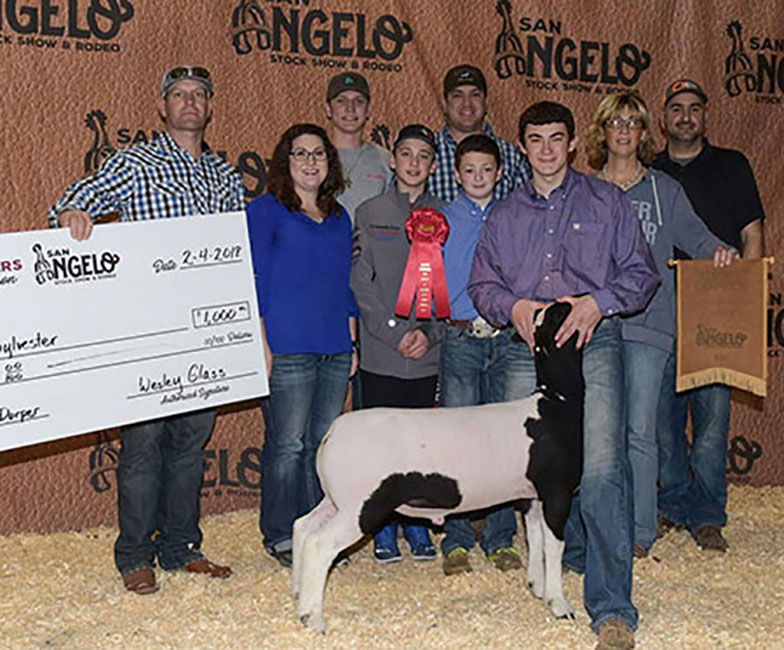 Reserve Champion Dorper Wether 2018 San Angelo Stock Show Congratulations to Ross Sylvester & Family