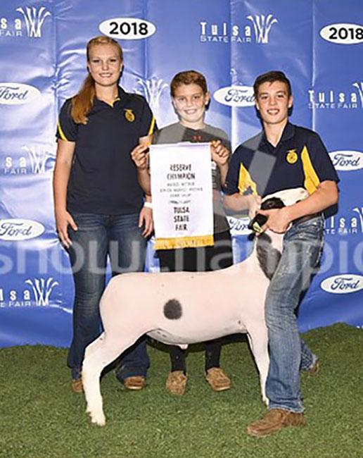 Reserve Champion Hair Sheep 2018 Tulsa State Fair  Congratulations Alec Anderson