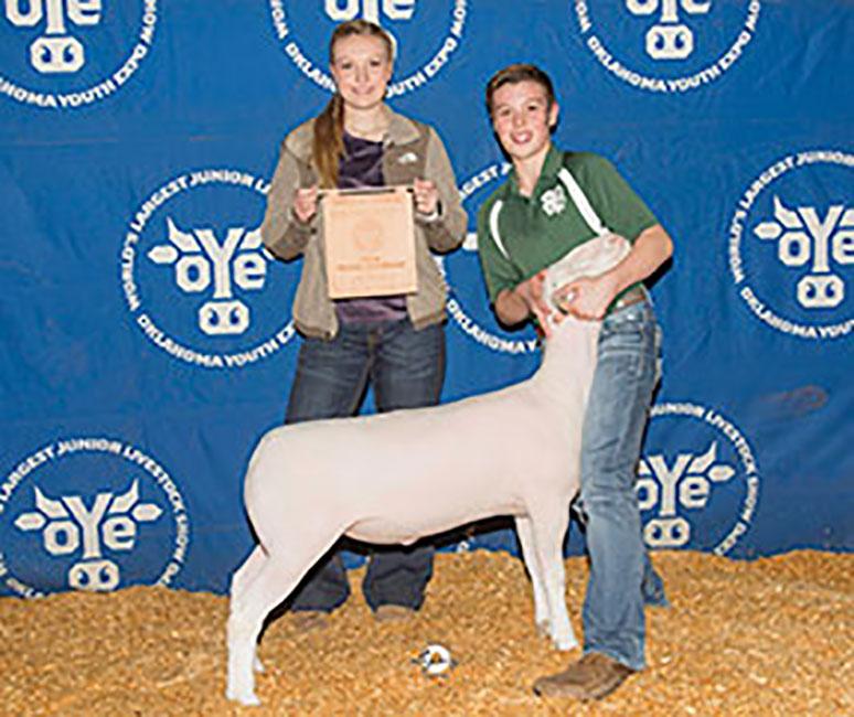 Champion Hair Sheep 2018 OYE Congratulations Alec Anderson