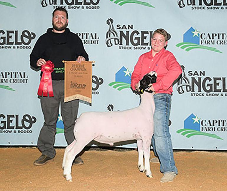 Reserve Champion Dorper 2020 San Angelo Stock Show  Congratulations Zane Walker