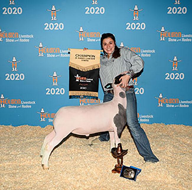Champion Dorper 2020 Houston Livestock Show Congratulations Sydney Thedford!