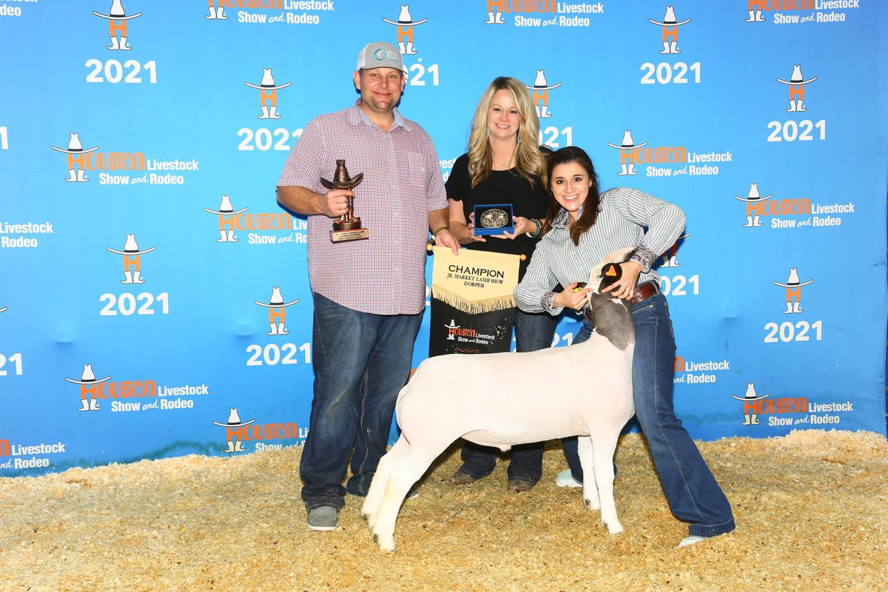 Champion Dorper 2021 Houston Livestock Show  Congratulations Sydney Thedord!