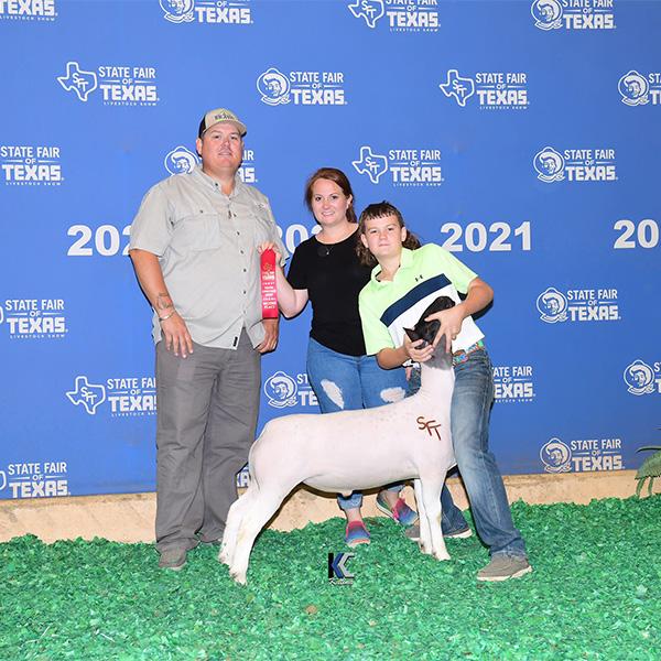 2nd Heavy Dorper State Fair of Texas